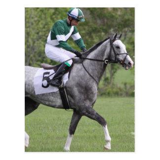 Postales grises Dappled del caballo de raza
