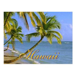 Postales hawaianas de la escritura de las palmeras