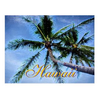 Postales hawaianas de las palmeras