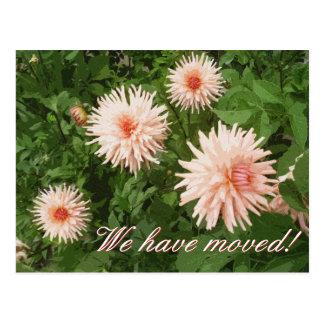 Postales móviles florales con la flor del crisante