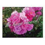 Postales móviles lindas con las flores color de ro