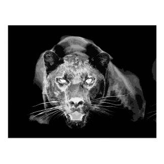 Postales negras salvajes de los ojos de gato de