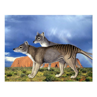 Postales tasmanas del tigre