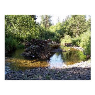 Postcard - 3rd Fork, Idaho #3370