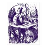 Postcard: : Alice in Wonderland - Caterpillar