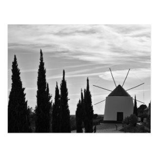 Postcard: Antique Windmill and Pine Tree. Portugal Postcard