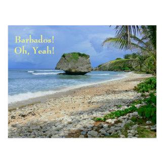 postcard, BARBADOS! OH, YEAH!/ BATHSHEBA ROCK Postcard