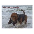 Postcard Basset Hound By The Sea