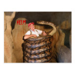 Postcard Big Snake QLD Australia Postcards