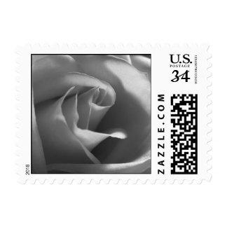 Postcard Black White Wedding Rose Invitation RSVP Postage