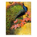 Postcard: Blue Peacock
