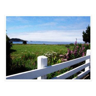 Postcard - California Pacific Coast scene #10