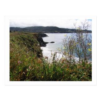 Postcard - California Pacific Coast scene #13