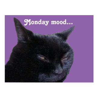 Postcard cat monday mood