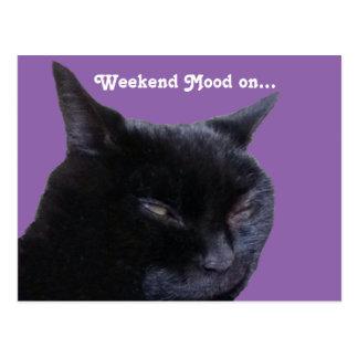 Postcard cat weekend mood on