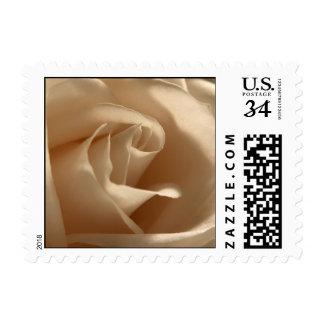 Postcard Cream Rose Wedding Invitation RSVP Stamp