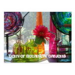 Postcard: Denver Botanical Gardens Postcard