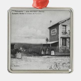 Postcard depicting a 'Panorama' near Antony Christmas Ornaments