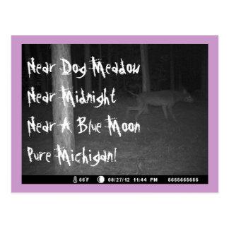 Postcard Game Cam Strange Canine Dog Meadow MI UP
