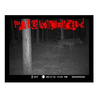 Postcard GameCam Black Shuck Dogman Pure Michigan!