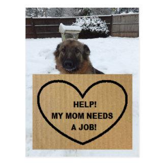 Postcard German Shepherd Help My Mom Needs A Job