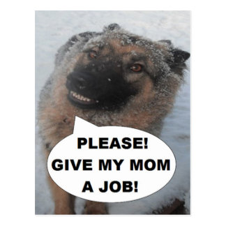 Postcard German Shepherd Please Give My Mom A Job