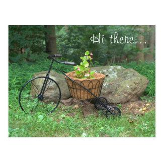 Postcard Hi There.. Bicycle Pink Flowers in Basket Postcard