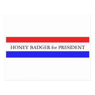 Postcard:  Honey Badger for President Postcard