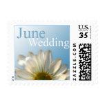 Postcard June Wedding Invitation RSVP Save Dates Stamps