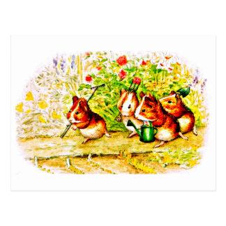 Postcard-Kids Art-Beatrix Potter 28 Postcard