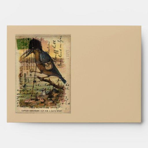 Postcard Kingfisher Envelopes