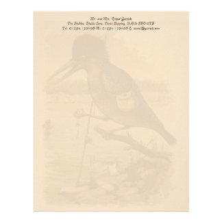 Postcard Kingfisher Letterhead