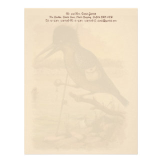 Postcard Kingfisher Personalised Letterhead