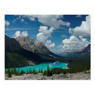 Postcard Lake Peyto in National Banff Park, Canada