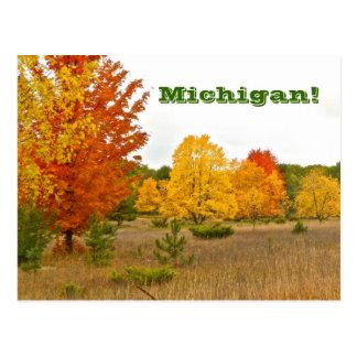 """postcard""""MICHIGAN COMES ALIVE WITH VIBRANT COLOR"""""""