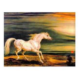 Postcard: Napoleon's Marengo