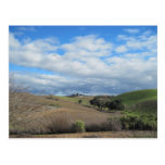 Postcard of Paso Robles Vineyard in January