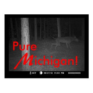 Postcard Original Photo Shuck Dogman Canine UP MI