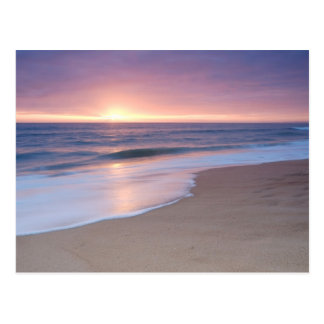 Postcard: Praia do Garrão Beach. Portugal Postcard