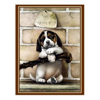 "Postcard: ""Puppy, 4 Weeks Old"" Postcard"
