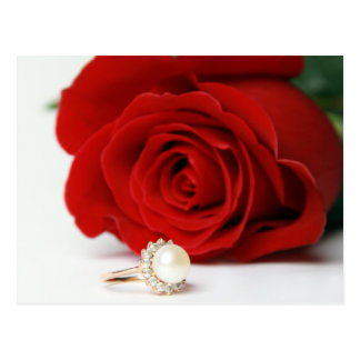 postcard red rose with love