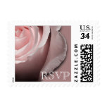 Postcard RSVP Wedding Rose Postage Stamp