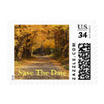 Postcard Save The Date Fall Wedding Autumn Invitat Stamp