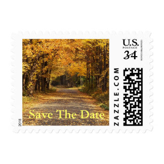 Postcard Save The Date Fall Wedding Autumn Invites Stamp