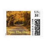 Postcard Save The Date Fall Wedding Autumn Invites Stamps