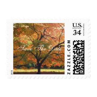 Postcard Save The Date Fall Wedding Invitation Pos Postage Stamp