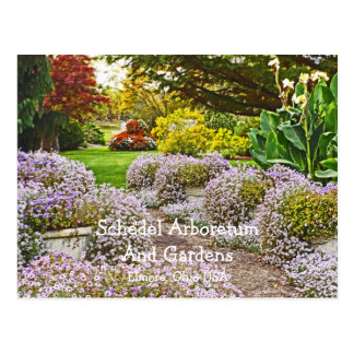 postcard, Schedel Arboretum and Gardens Postcard