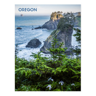 Postcard: Sea Stacks And Iris (Portrait) Postcard