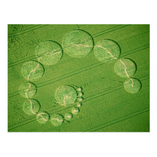 Postcard: Single Julia Crop Circle Postcard