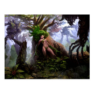 Postcard - Sorrow Woods